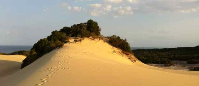 Sandblow | Fraser Island Retreat | Happy Valley