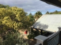 Exterior | Fraser Island Retreat | Happy Valley